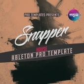 Ableton Live Pro Templates